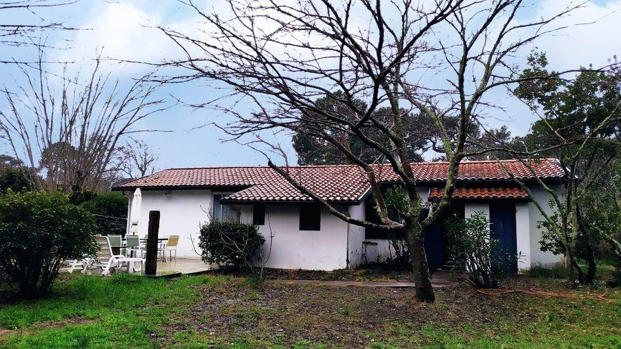 rénovation totale d'une maison au Vieux Pyla, réaménagement d'une dépendance